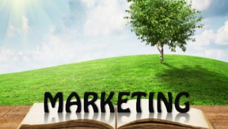 Marketing Page Image